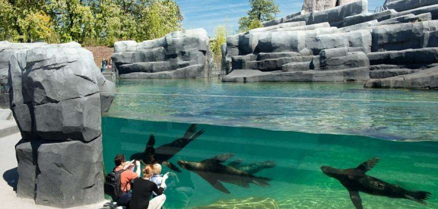 Zoom sur les animaux de Patagonie